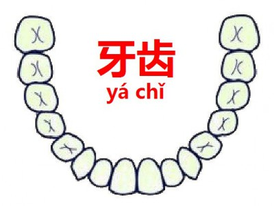 356_歯99
