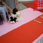 中国では当たり前、事前に結婚写真の撮影。アルバム【相册】