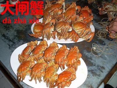 蒸し上がって並べられた上海蟹