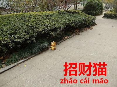 道に置かれていた招き猫