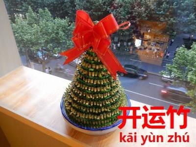 中国で贈られたラッキーバンブー