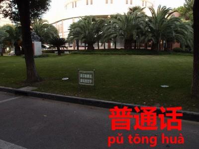 表示看板が刺さった芝生