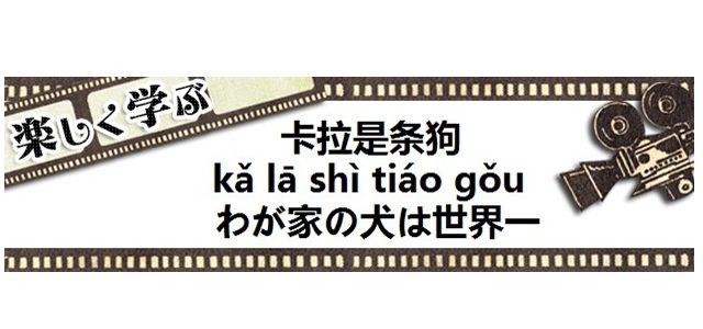 中国映画わが家の犬は世界一