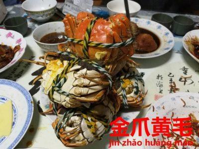 蒸し上がった上海蟹