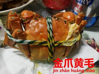 ズーム上海蟹