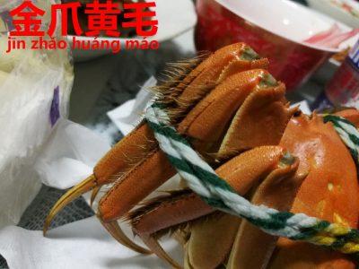 黄金の毛の上海蟹