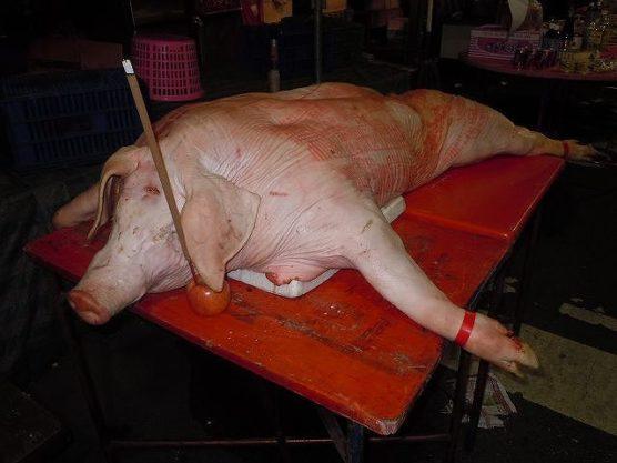 台湾台中の鬼月の飾り豚