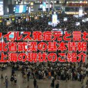新型ウイルス発症元と言われる湖北省武漢の基本情報と上海の現状のご紹介